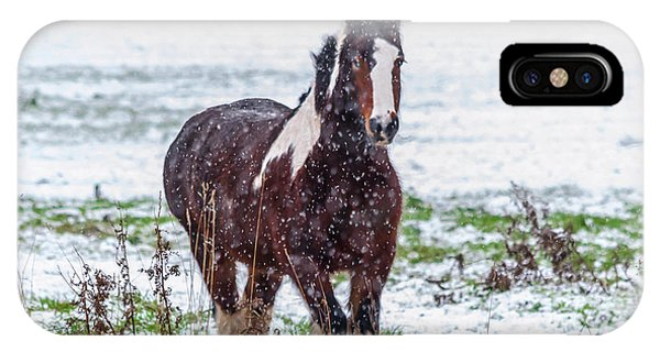 Brown Horse Galloping Through The Snow IPhone Case