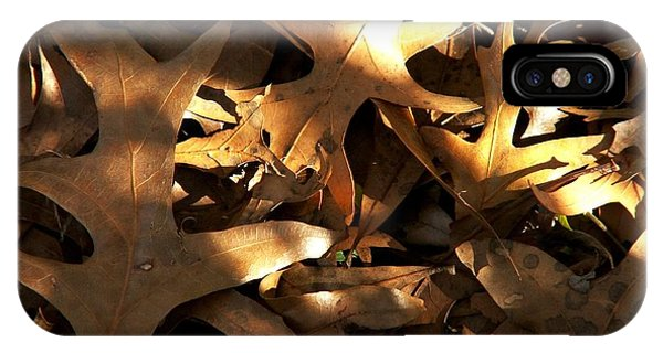 Brown Leaves And Sunlight IPhone Case