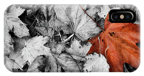 Brown Maple Leaf IPhone Case