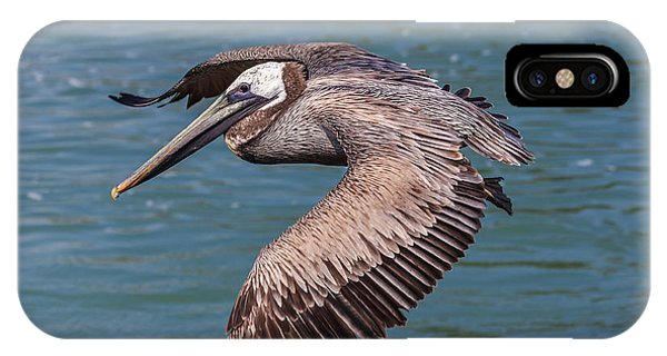 Brown Pelican In Flight IPhone Case