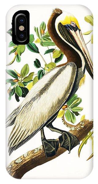 Brown Pelican IPhone Case