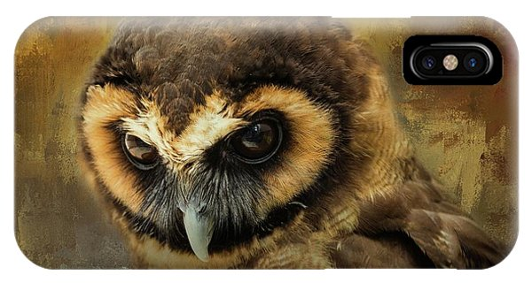 Brown Wood Owl IPhone Case