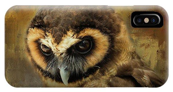 Brown Wood Owl IPhone Case