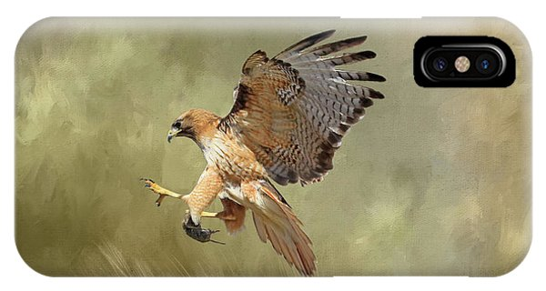 Red Tail Hawk iPhone Case - Brunch by Donna Kennedy