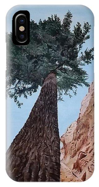 Bryce Pine IPhone Case