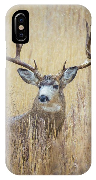 IPhone Case featuring the photograph Buck In Snow by John De Bord