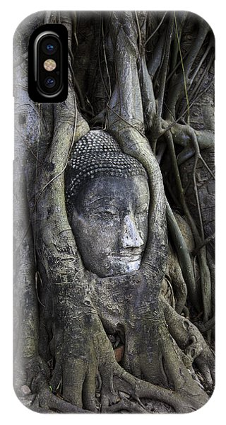 Buddha Head In Tree IPhone Case