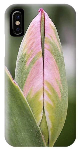 Budding Beauty IPhone Case