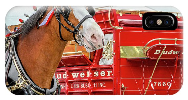 Budweiser Clydesdale In Full Dress IPhone Case