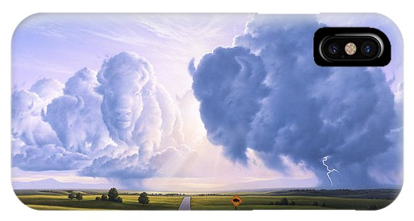 Road Signs iPhone Case - Buffalo Crossing by Jerry LoFaro