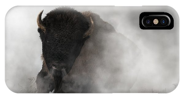 Buffalo Emerging From The Fog IPhone Case