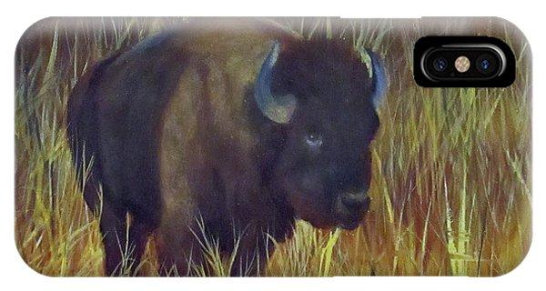 Buffalo Grazing IPhone Case