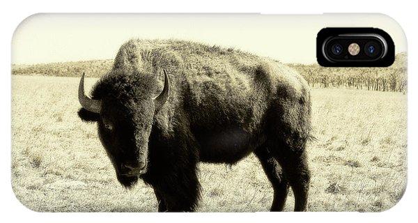 Buffalo In Sepia IPhone Case