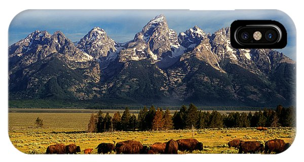Teton iPhone Case - Buffalo Under Tetons by Leland D Howard