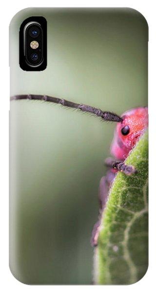 Bug Untitled IPhone Case