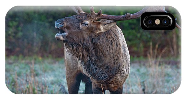 IPhone Case featuring the photograph Bugling Elk by Rick Hartigan
