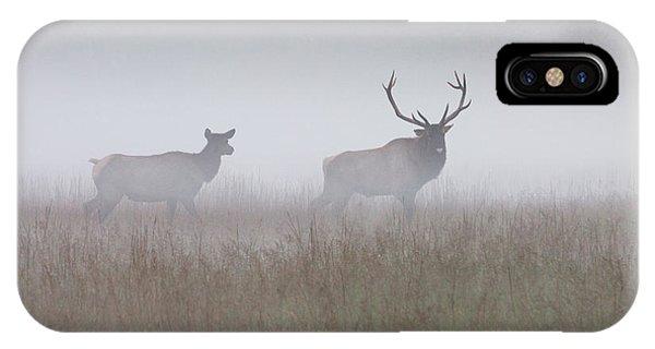 Bull And Cow Elk In Fog - September 30 2016 IPhone Case