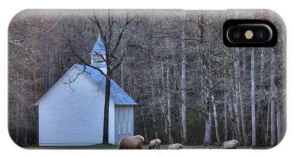 Bull Elk Attending Palmer Chapel  In The Great Smoky Mountains National Park IPhone Case
