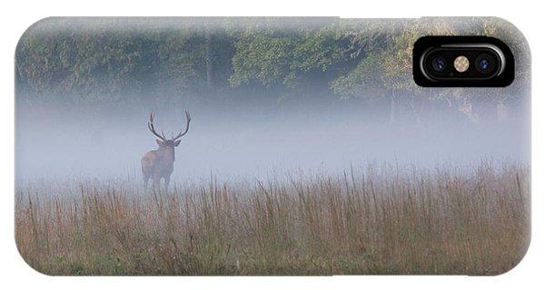 Bull Elk Disappearing In Fog - September 30 2016 IPhone Case