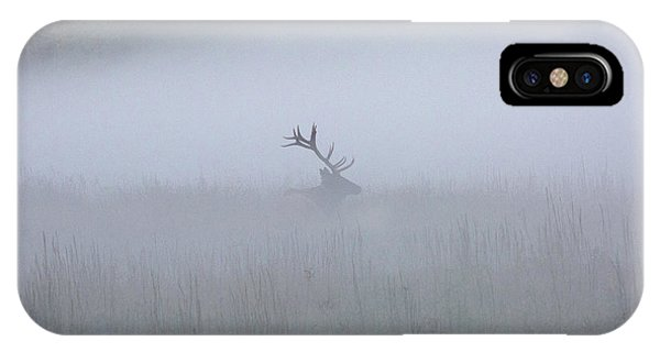 Bull Elk In Fog - September 30, 2016 IPhone Case