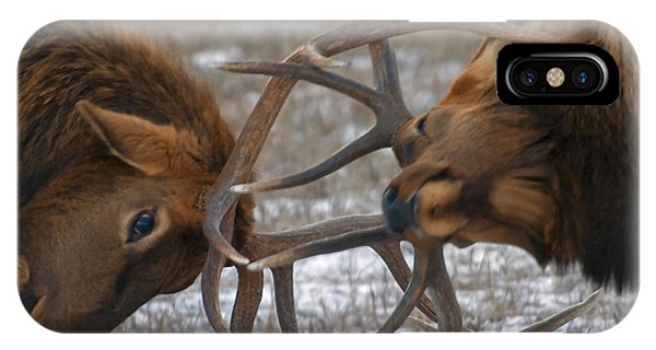 Bull Elk In The Rut-signed IPhone Case