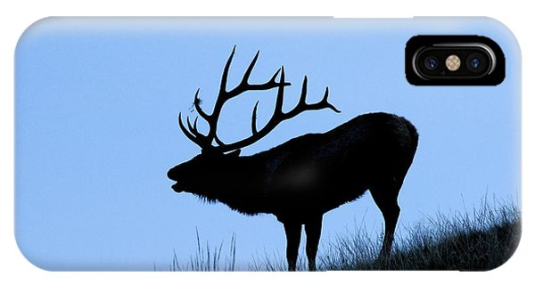 Bull Elk Silhouette IPhone Case