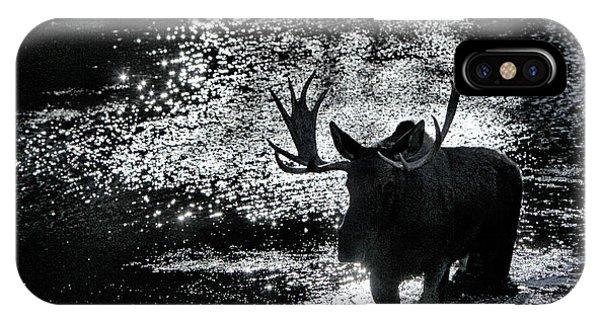 Bull Moose Shadow IPhone Case