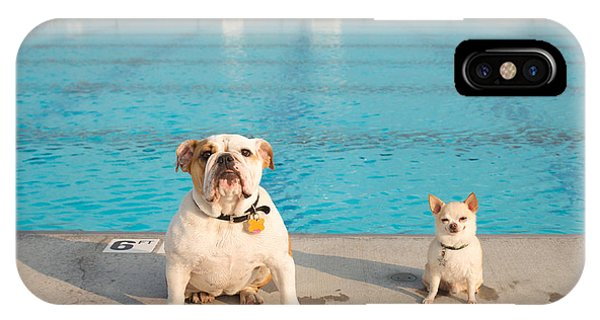 Bulldog And Chihuahua By The Pool IPhone Case