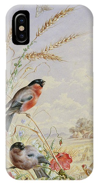 Bullfinches In A Harvest Field IPhone Case