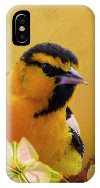 Bullocks Oriel IPhone Case