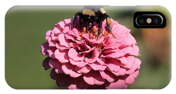 Bumble Bee On Zinnia 2649 IPhone Case