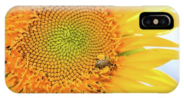 Bumble Bee With Pollen Sacs IPhone Case