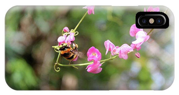 Bumble Bee2 IPhone Case