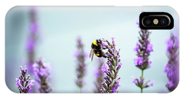 Honeybee iPhone X Case - Bumblebee And Lavender by Nailia Schwarz