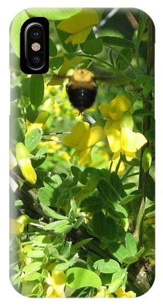 Bumblebee In Flight In Yellow Flowers IPhone Case