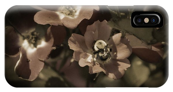 Bumblebee On Blush Country Rose In Sepia Tones IPhone Case