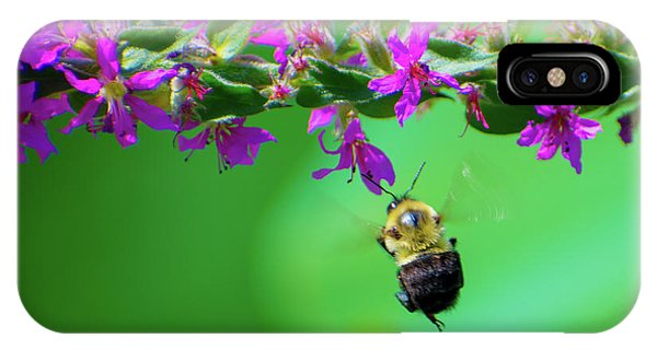 Bumblebee To Nectar IPhone Case