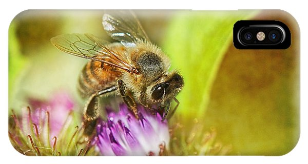 Honeybee iPhone X Case - Bumbling Bee by Susan Capuano