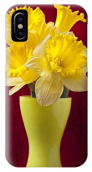 Yellow Trumpet iPhone Case - Bunch Of Daffodils by Garry Gay