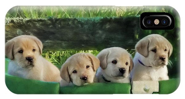 Bundles Of Joy - Labrador Art IPhone Case