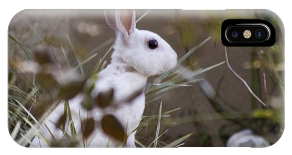 Bunny In The Garden Phone Case by Anthony Towers