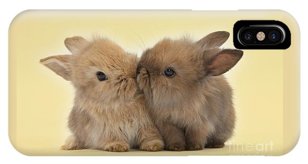 Bunny Kisses IPhone Case