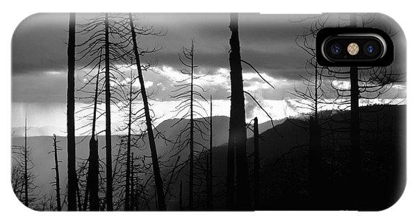 Burnt Forest - Yosemite IPhone Case