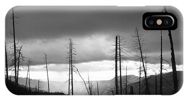 Burnt Forest II - Yosemite IPhone Case