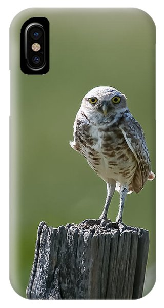 IPhone Case featuring the photograph Burrowing Owl by Gary Lengyel