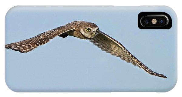 Burrowing Owl In Flight IPhone Case