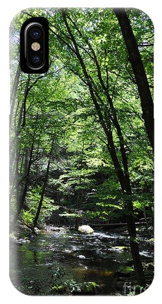 Bushkill Creek IPhone Case