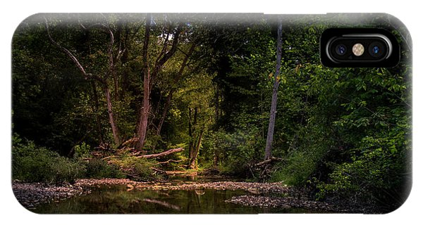 Busiek State Forest IPhone Case