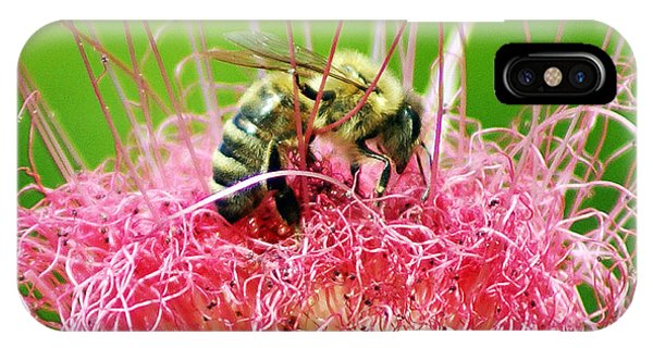 iPhone Case - Busy Bee by Holly Kempe
