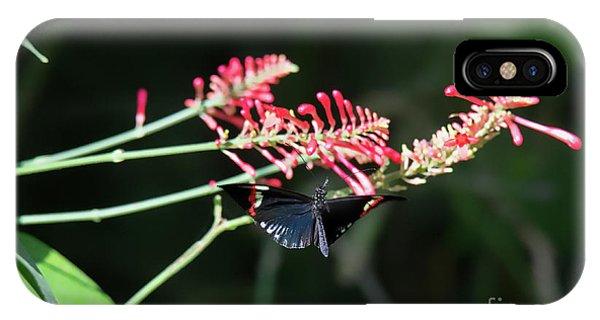 Butterfly In Flight IPhone Case
